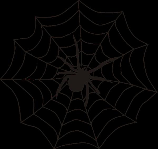 """alt=""""spider-155449_960_720"""""""