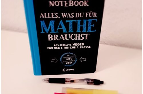 "alt=""Big Fat Notebook. Mathe"""