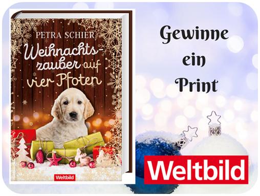 """alt=""""Print, Weihnachtszauber auf vier Pfoten"""""""
