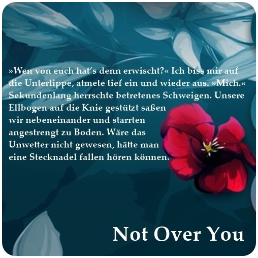 "alt=""Textschnipsel zu Not over you (4)"""