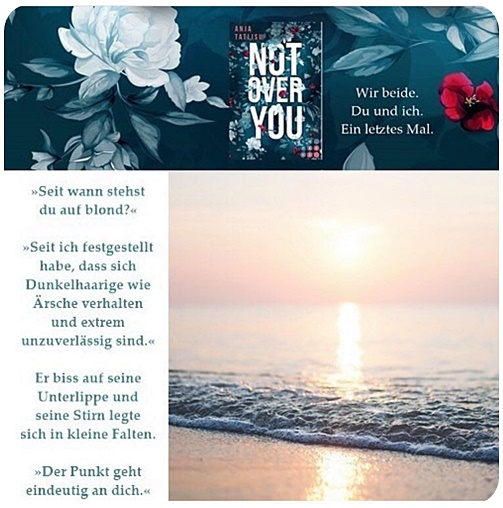 "alt=""Textschnipsel zu Not over you (1)"""