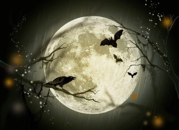 "alt=""halloween-72939_640"""
